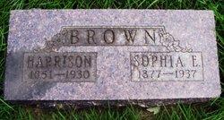 Sophia Estelle <i>Tuttle</i> Brown