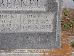 John A. Becnel
