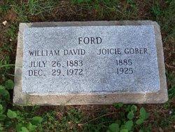 William David Will Ford