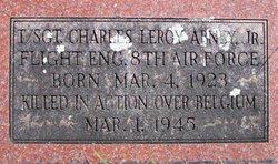 Sgt Charles Leroy Abney, Jr