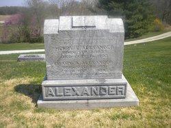 Mary Ann <i>Curry</i> Alexander