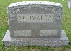 Louise Schwartz