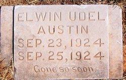 Elwin Udel Austin