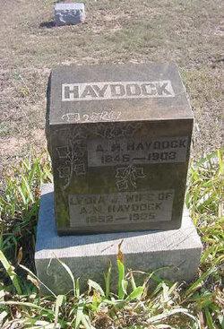 Alfred Morrison Haydock