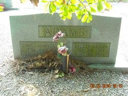 James Marvin Adams