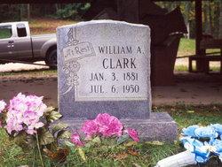William Albert Clark