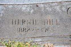 Hernie Hill Carter