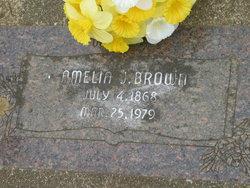 Amelia J. Brown