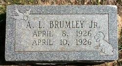 A. L. Brumley, Jr