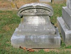 Eliza J. L. Anderson