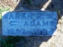 Sarah A. <i>Harbaugh</i> Adams