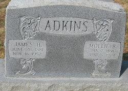 Mollie <i>Beard</i> Adkins
