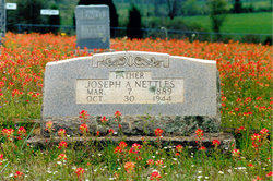 Joseph A. Nettles