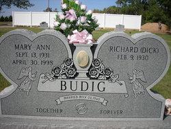 Mary Ann <i>Dobson</i> Budig