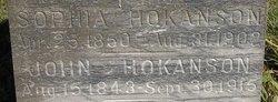 Sophia <i>Wessman</i> Hokanson