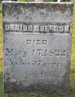Darius Sheldon