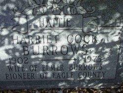 Harriet A <i>Cock</i> Burrows
