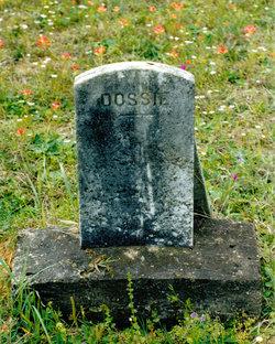 William Dorsey Dossie Evans