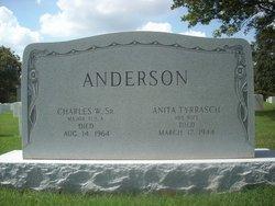 Anita <i>Tyrrasch</i> Anderson