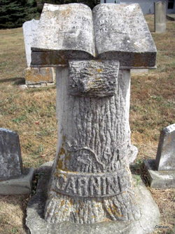 Allen Carnine