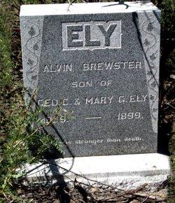 Alvin Brewster Ely
