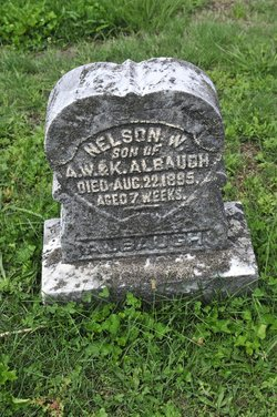 Nelson Wells Albaugh