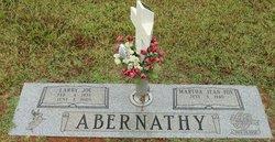 Larry Joe Abernathy