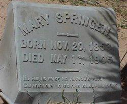 Mary <i>Oleson</i> Springen