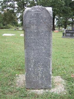 Samuel M. Cornatzer