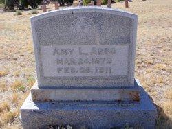 Amy Lee <i>Lewis</i> Abbo