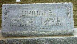 Emily Elizabeth <i>Hillen</i> Bridges