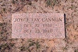Joyce Fay Cannon