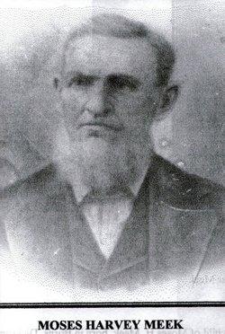 Moses Harvey Meek