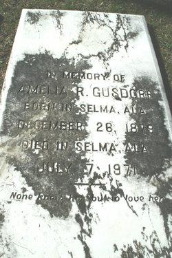 Amelia R Gusdorf