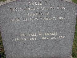 Angie F Adams