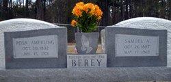 Rosa <i>Amerling</i> Berey