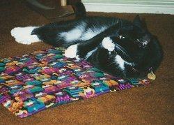 Rocky <i>Cat</i> Kagarise