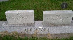 David L Anderson