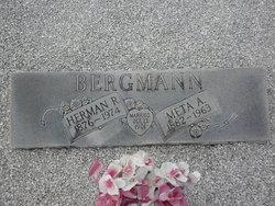 Meta Anna <i>Hitzfeld</i> Bergmann