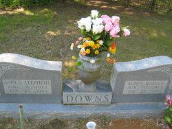 James Stephens Downs