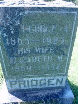 George Albert Pridgen