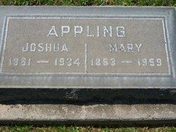 Joshua Appling