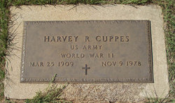 Harvey R Red Cuppes