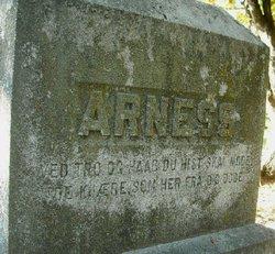 Alexander Cornelius Arness