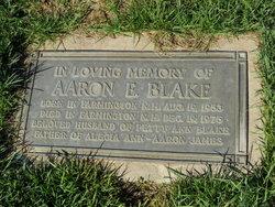Aaron Eric Blake