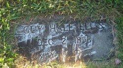 Guy Hale Ellis
