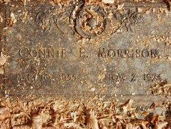Connie E Morrison
