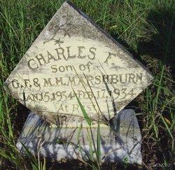 Charles F Marshburn