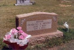 Frances Elizabeth <i>Moore</i> Nevins