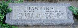 Ann <i>Sewell</i> Hawkins